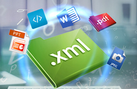 XML Data Entry